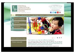 Vision & Conceptual Development